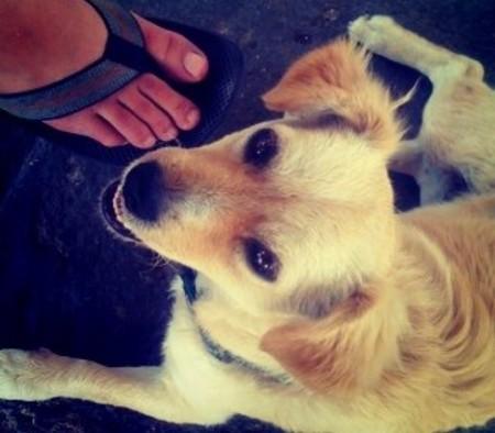 Pies y un perrete: La esencia de Instagram ya estaba en su primera publicación
