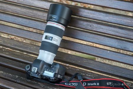 Canon EF 70-200 mm f4L IS II USM, análisis: ahora mejor estabilizado, con resultados y polivalencia que no decepcionan