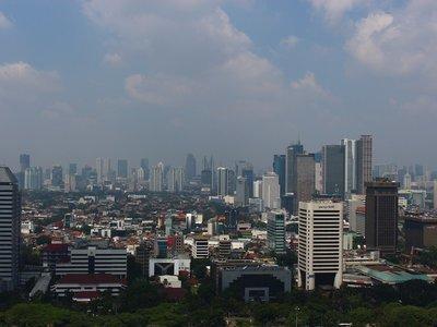 La contaminación del aire de la Ciudad de México también podría contaminar tu cerebro