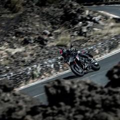 Foto 5 de 20 de la galería kawasaki-z800-y-z1000-sugomi-special-edition en Motorpasion Moto