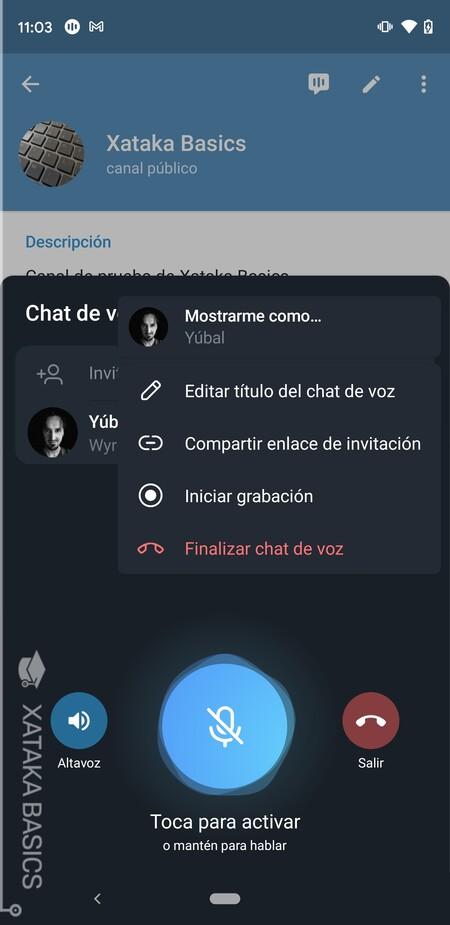 Opciones Chat