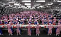Pegatron contrata a 40.000 nuevos empleados, iPhone e iPad mini a la vista