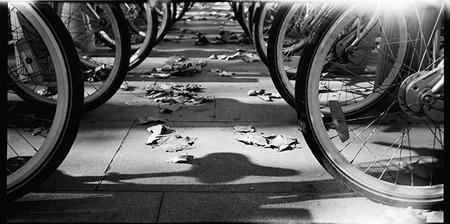 Las Bicicletas son para el Invierno
