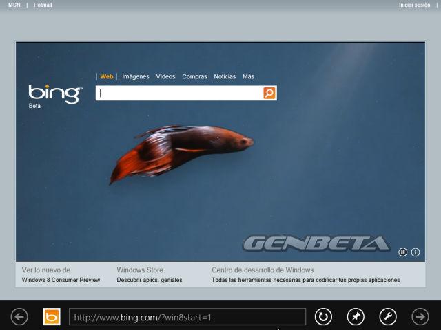 La primera pantalla que veremos en el navegador