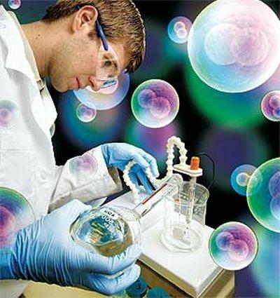 Las células madre ayudarán a la reproducción asistida