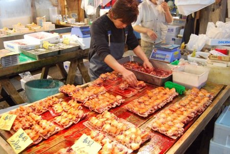 Cómo ha afectado el terremoto a los lugares turísticos de Tokyo