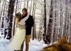 El mejor cámara ara el día e tu boda puede ser tu perro, y aquí está la prueba