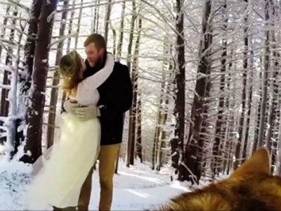 El mejor cámara para el día de tu boda puede ser tu perro, y aquí está la prueba