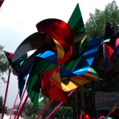Foto 6 de 8 de la galería fotos-sacadas-con-moto-e-en-modo-automatico en Xataka México
