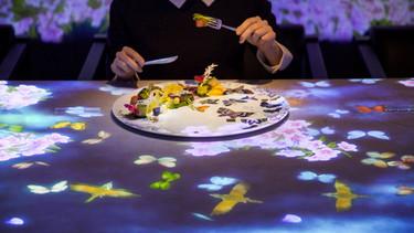 De mi plato salen pájaros: ¿conoces la gastronomía inmersiva?