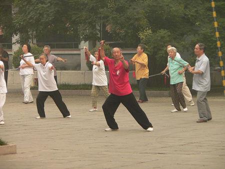 Tai Chi: la técnica del movimiento (II)
