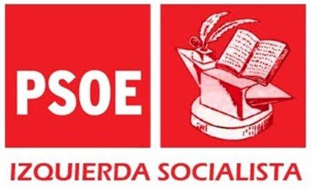 Ni Izquierda Socialista ni CiU han apoyado el referéndum constitucional