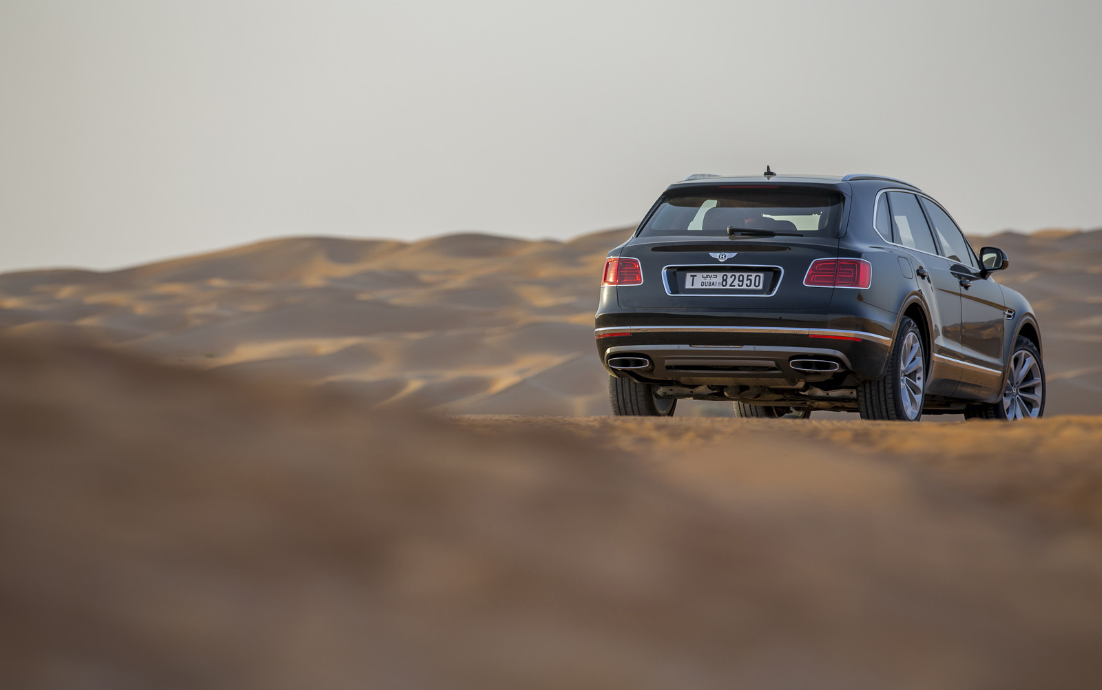 Foto de Bentley Bentayga Falconry (13/36)