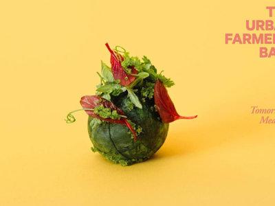 La comida de mañana representada en albóndigas