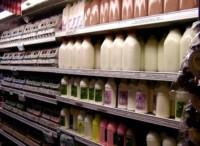 Alternativas naturales a la leche convencional