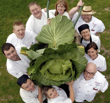 Verduras Gigantes