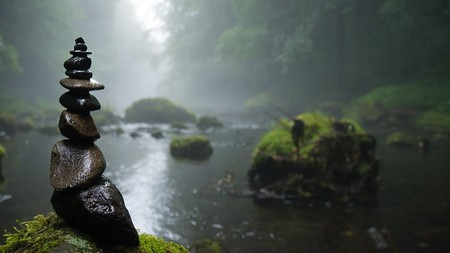 Cosas que se encuentran en los pantanos (gracias a su capacidad de conservación)