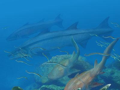 Se hallan fósiles de un pez que vivía hace 400 millones de años