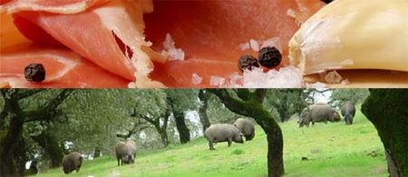 Nuestro jamón ibérico, a la conquista del mercado chino del lujo