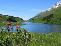 Excursión por los Alpes Austríacos II: el nacimiento del río Litz