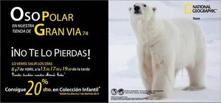 Llega a Madrid el oso polar de National Geographic con actividades infantiles y descuentos en su nueva tienda