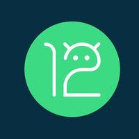 Android 12 Developer Preview 3 ya está aquí: nuevas animaciones, cambios en la interfaz y más novedades