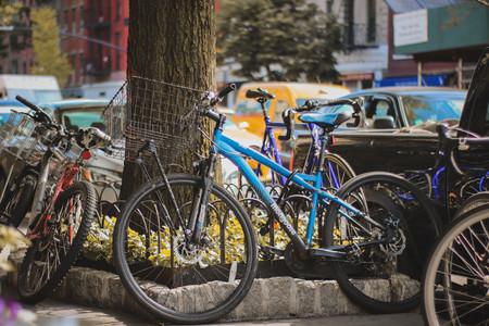Bicicleta21