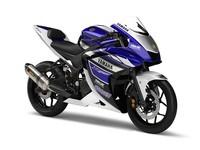 Yamaha R25 presentada en el Salón de Tokio