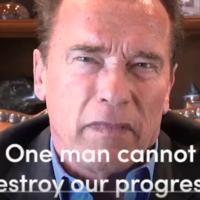 Cuando Schwarzenegger (y medio mundo) te echa la bronca es que sabes que algo estás haciendo mal