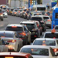 ¿Preocupados por el CO₂ de los coches? Un estudio revela que los jabalíes emiten más que 1,1 millones de vehículos