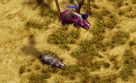 Hipopótamo morado volador