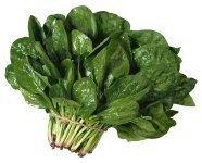 Espinacas, ricas en vitaminas y minerales