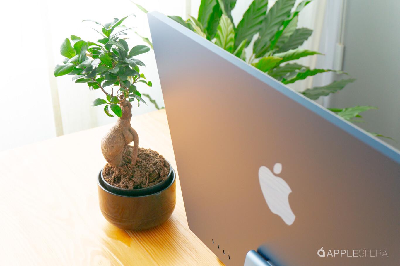 Apple iMac 2021 análisis: review con características ...