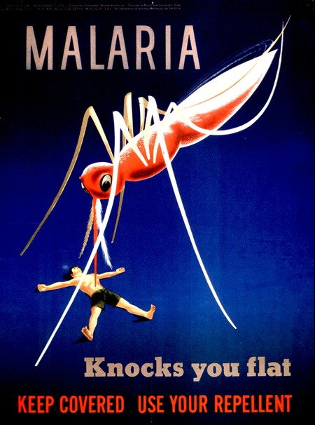 Malaria Knocks You Flat Keep Covered Use Your Repellent 4647891178