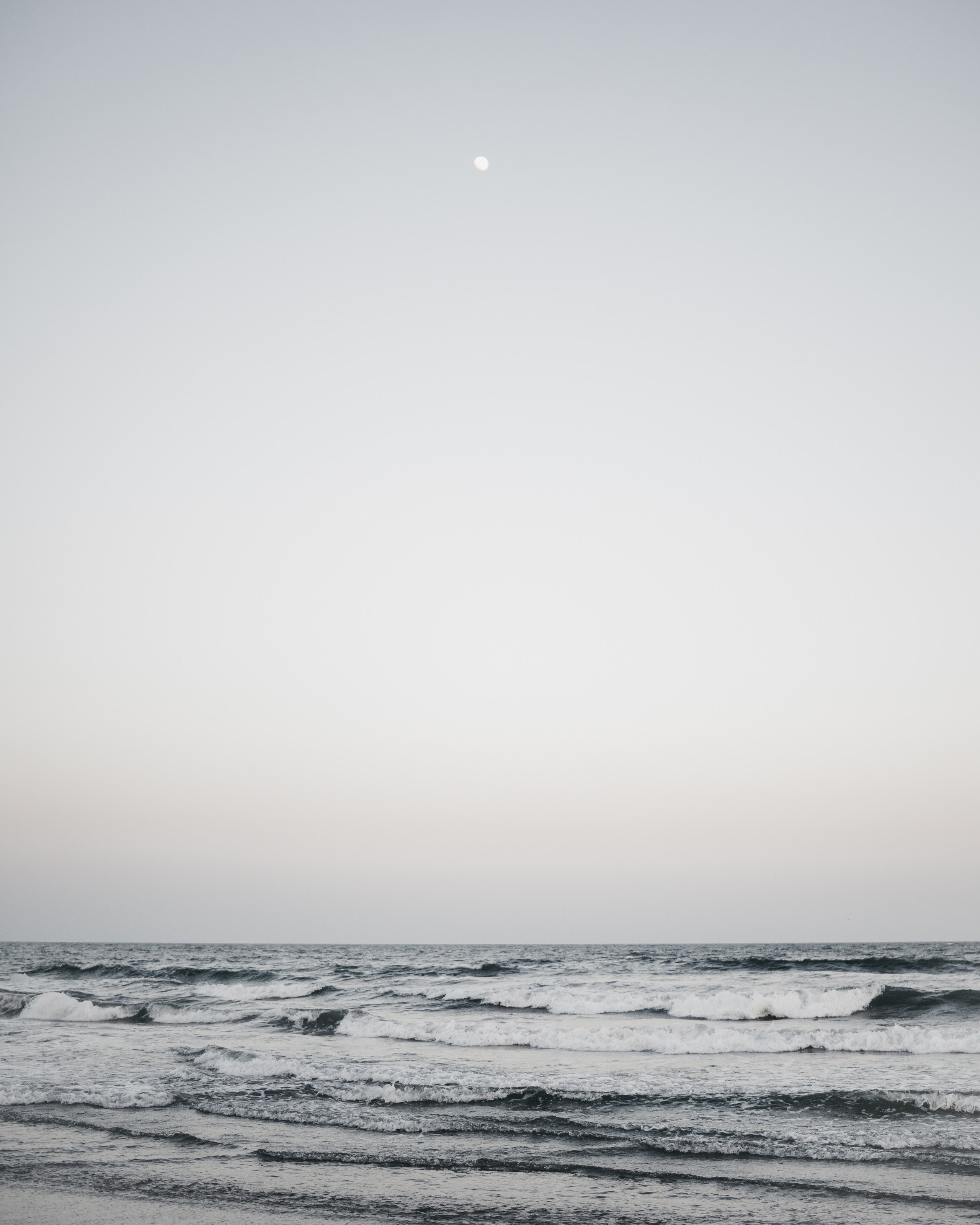 Foto de Fondos del mar (15/17)
