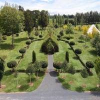 Esta iglesia hecha de árboles demuestra que la arquitectura aún tiene ideas frescas