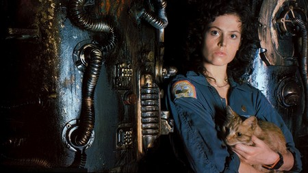Ripley And Cat Image