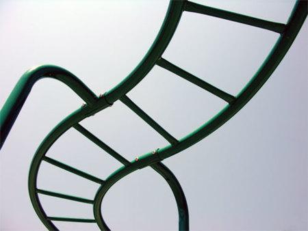 La escalera del gimnasio, una buena manera de entrenar el tren superior