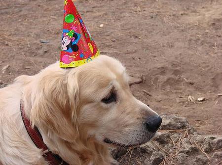 Celebración de cumpleaños de niños mayorcitos