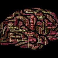 La inclinación a la espiritualidad y la fe podría estar localizada en un circuito cerebral específico