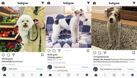 Instagram para Android: así puedes dejar comentarios sin abrir la foto en grande