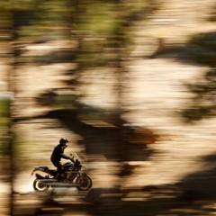 Foto 13 de 15 de la galería harley-davidson-pan-america-2020 en Motorpasion Moto
