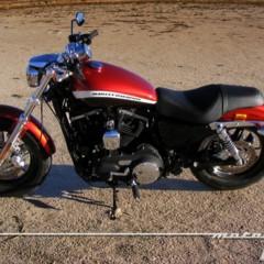 Foto 19 de 65 de la galería harley-davidson-xr-1200ca-custom-limited en Motorpasion Moto