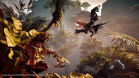 Horizon Zero Dawn Ps4 Pro 02
