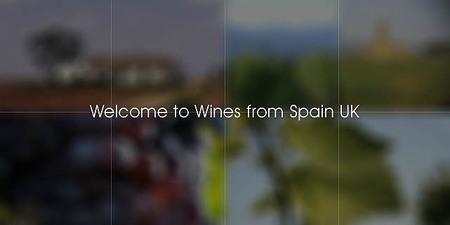 31 bodegas españolas participaron en la 23ª edición de la cata anual Wines From Spain Trade Fair de Londres