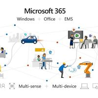 ¿Podría incluir Microsoft 365 for Life una versión de Windows 10 con características especiales? Es lo que indica este rumor