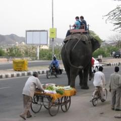 Foto 17 de 19 de la galería caminos-de-la-india-jaipur en Diario del Viajero