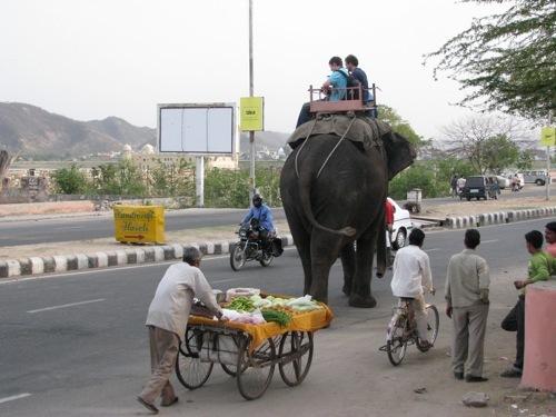 Foto de Caminos de la India: Jaipur (17/19)