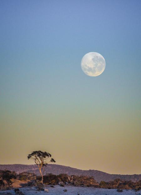 Superluna Australia