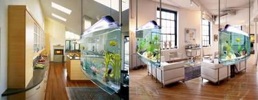 Los 17 acuarios más sorprendentes para instalar en casa